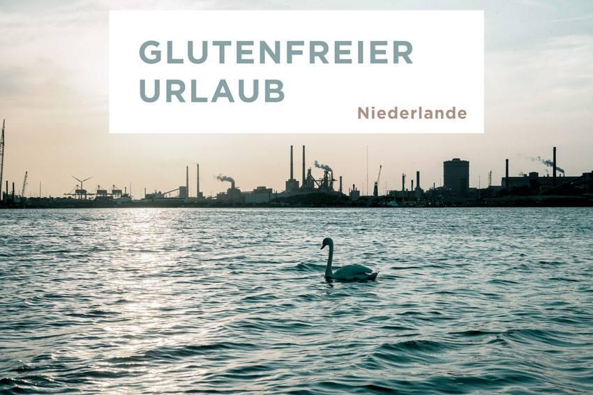 glutenfrei & laktosefrei durch Amsterdam | Freiknuspern