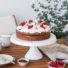 Cappuccino-Johannisbeer-Schoko Torte (glutenfrei & vegan)